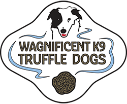Wagnificent K9 Truffle Dogs